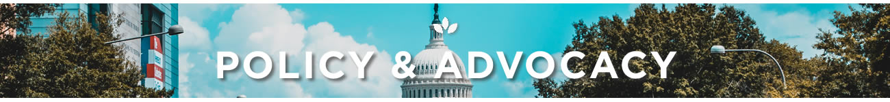 Policy and Advocacy page header