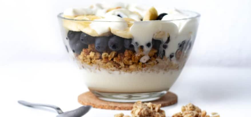 Plant-Based Yogurt Labeling Standards Released