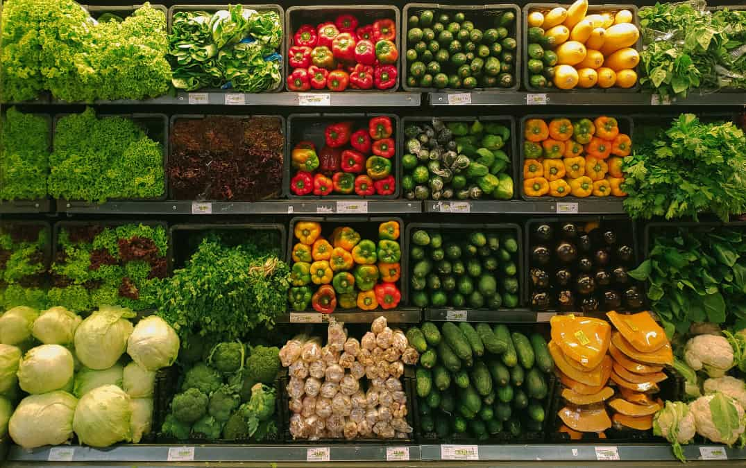 Policy Update: Representing Plant-Based Foods at Top Legislative Conferences